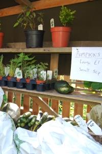Culross garden stall