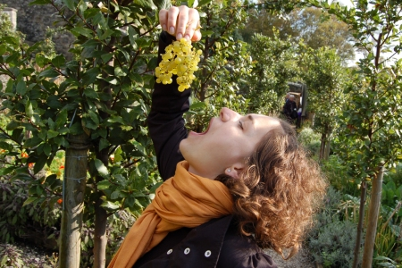 Kulka tasting grapes